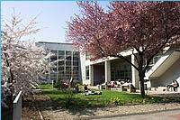 patio_jardin_5